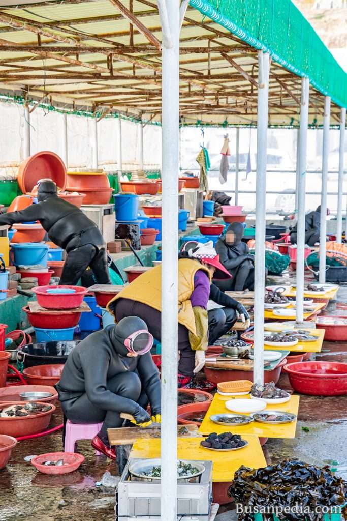 Seafood market and Haenyeo (women divers) in Busan, South Korea