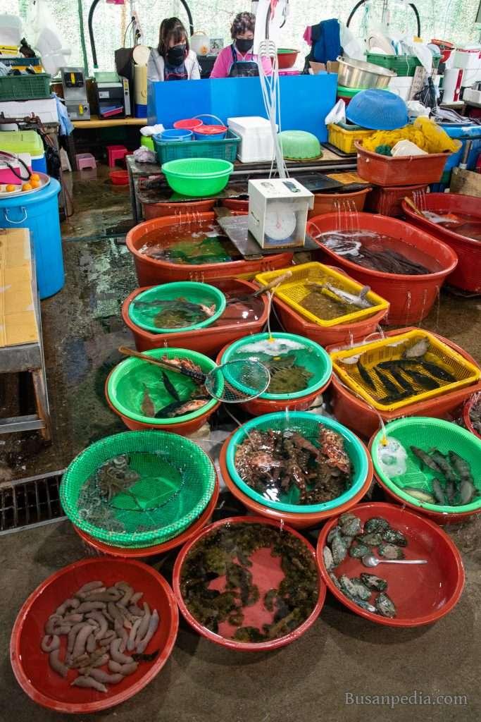 Gijang Woljeon Seafood Market in Busan, South Korea