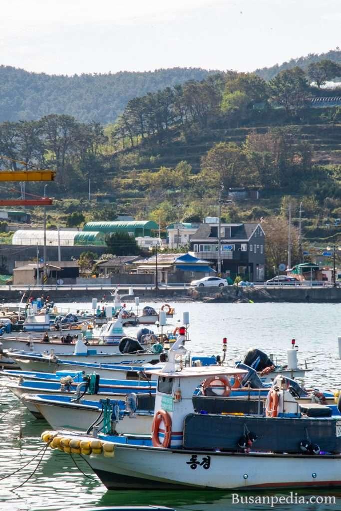 Gijang Jukseong Port in Busan, South Korea