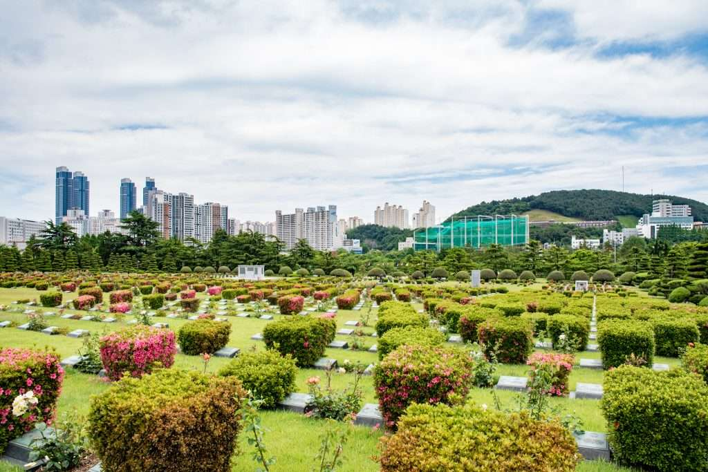 United Nations Memorial Cemetery in Busan, South Korea