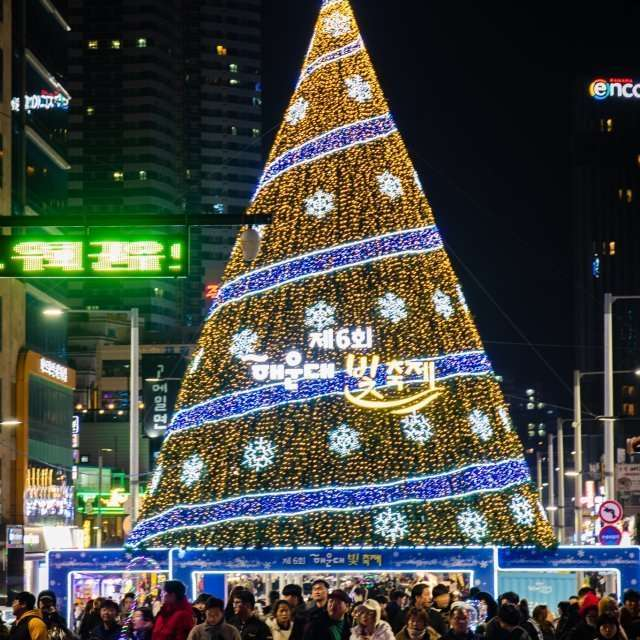 Christmas Tree at Haeundae Light Festival in Busan